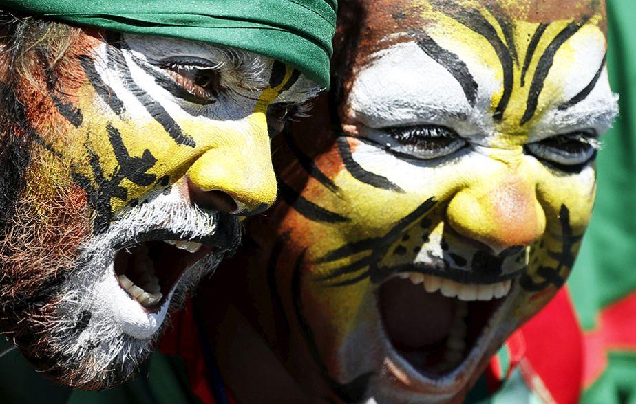 Tigres rugissants !