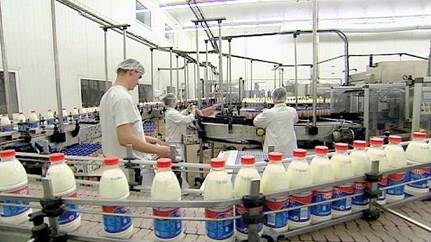 Fin des quotas laitiers la semaine prochaine