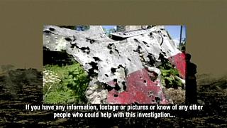 MH17 crash: Video appeal launched for BUK rocket witnesses