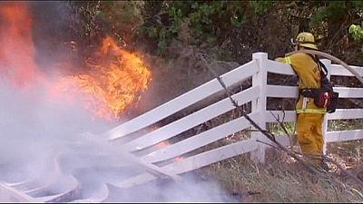 Vasto incendio a Nord-Est di Los Angeles