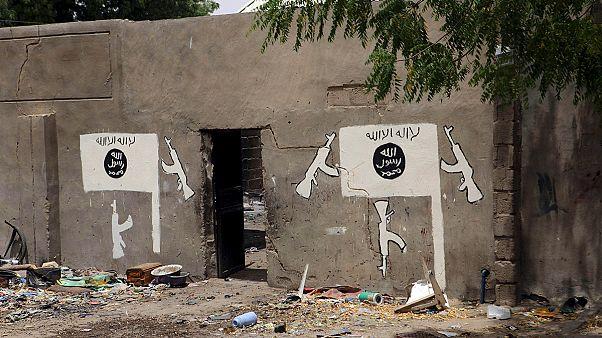 منطقه شمال نیجریه، جولانگاه بیش از یک دهه بوکوحرام