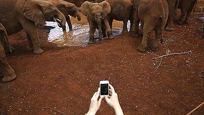 """Periscope: después de los """"selfies"""", comienza la nueva moda de los """"velfies"""""""