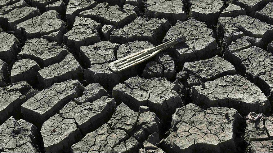فيورينا تحمل المدافعين عن البيئة مسؤولية الجفاف في كاليفورنيا