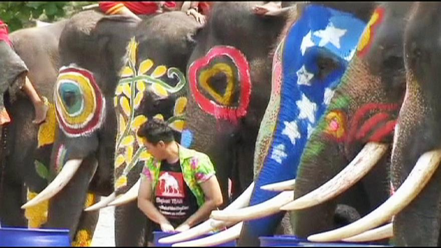 Elephants kick off Thai water festival with a splash