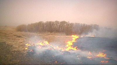Sud della Siberia in fiamme. Oltre 20 morti in due giorni. 5000 evacuati