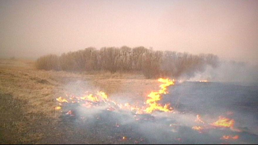 Rusya'da çıkan orman yangınında ölü sayısı 23'e yükseldi