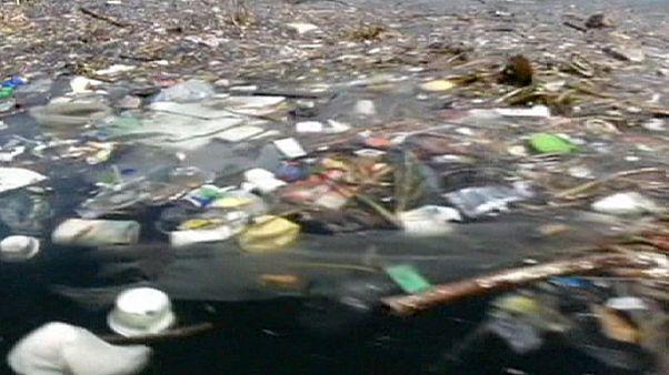 Brezilya: Kürek yarışlarının yapılacağı gölde tonlarca ölü balık