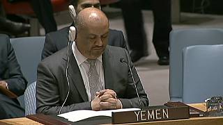 L'ONU impose un embargo sur les armes aux rebelles Houthis au Yémen