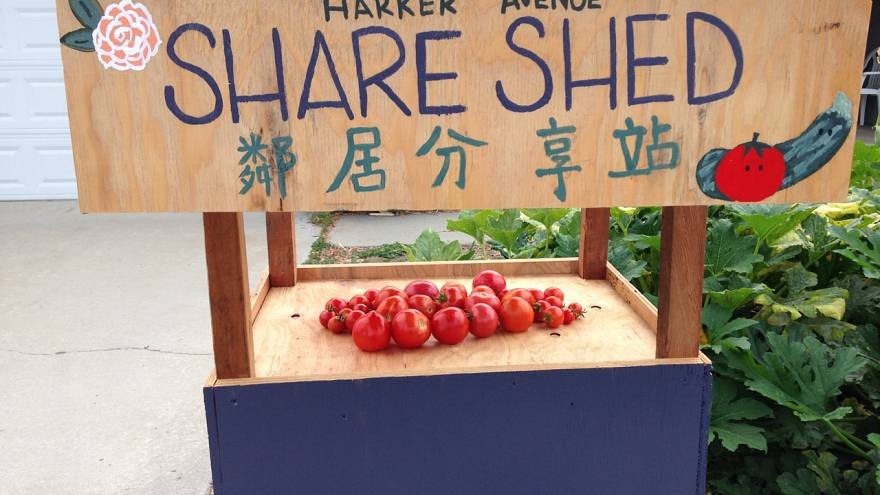 A garden and a 'Share Shed' are helping this couple build a more inclusive neighborhood