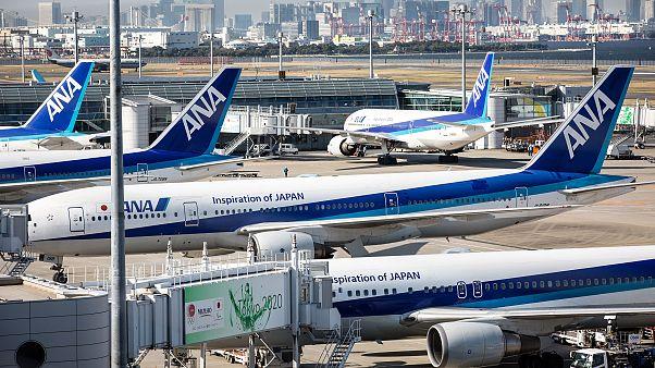 Image: All Nippon Airways (ANA)