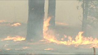 Rússia: 29 mortos em incêndios na Sibéria
