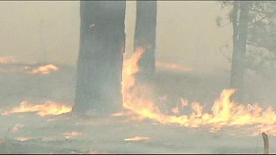 Violents incendies en Sibérie