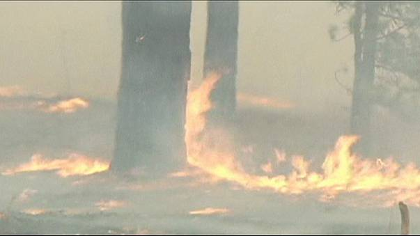 Inzwischen mehr als 100 Flächenbrände in Sibirien