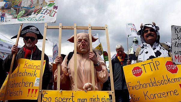 Decenas de miles de manifestantes protestan contra el Tratado de Libre Comercio e Inversiones en toda Europa