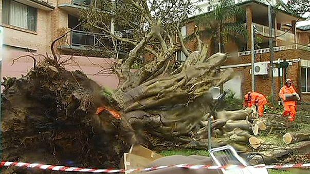 Une violente tempête s'abat sur Sydney