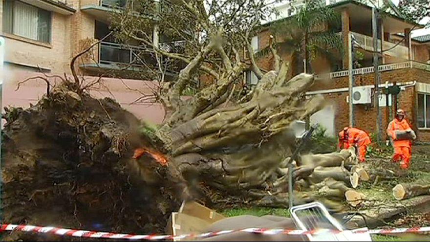 Austrália: três mortos em Nova Gales do Sul