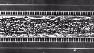 Um coração em forma de microchip