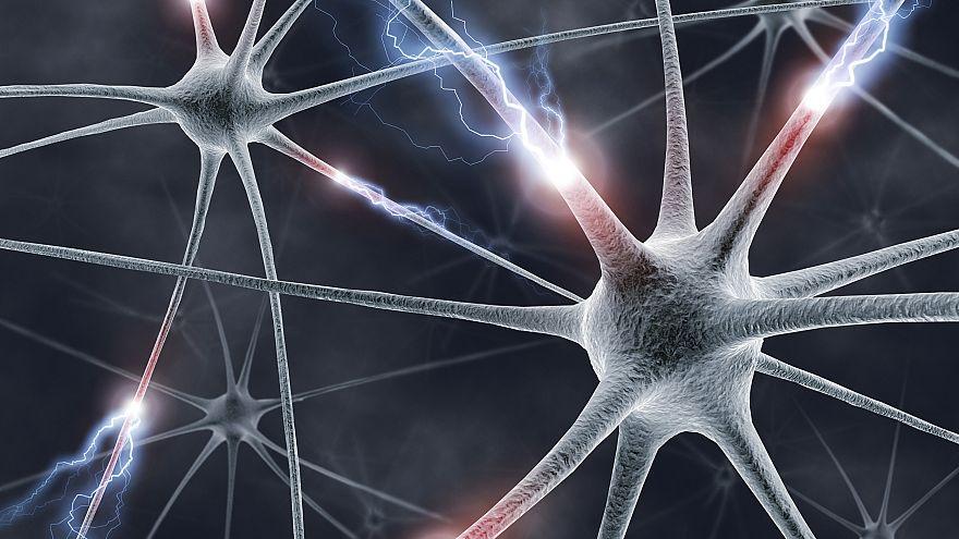 Neural network, artwork