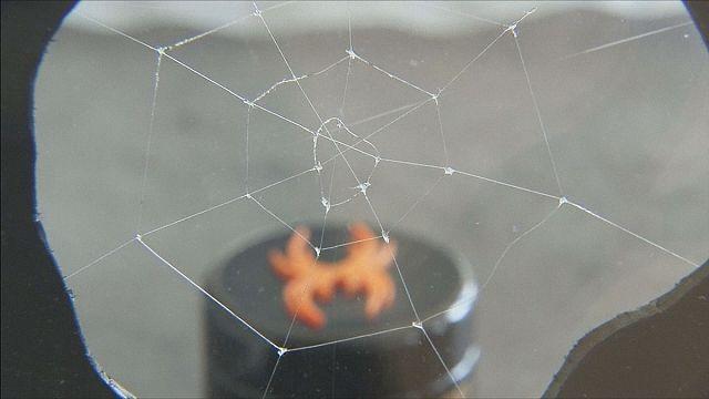حرير اصطناعي متين كحرير العنكبوت