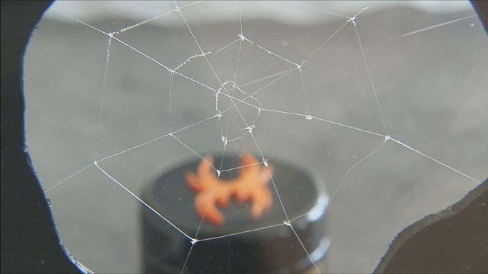 ساخت تار عنکبوت مصنوعی محکم و براق مانند ابریشم
