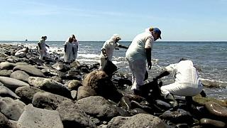 Fuel slick washes up on Gran Canaria beaches