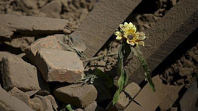 Tragic aftermath of Nepal earthquake