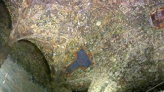 Неизвестные фрески Леонардо показали публике