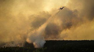 Ukraine : importants feux de forêt près de la centrale de Tchernobyl