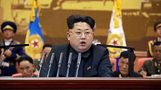 Kuzey Kore liderinin otoritesine karşı çıkan 15 kişi idam edildi