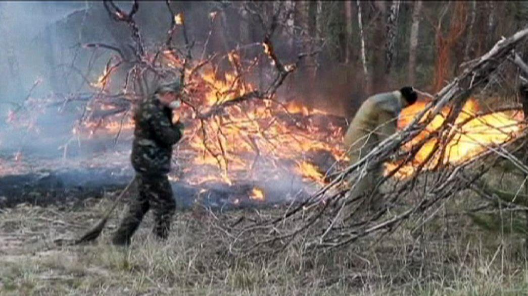 Controlado el incendio forestal declarado cerca de Chernóbil