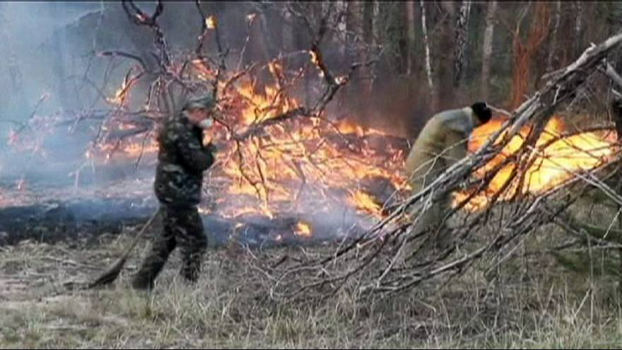 Ukraine blaze 'under control' near Chernobyl