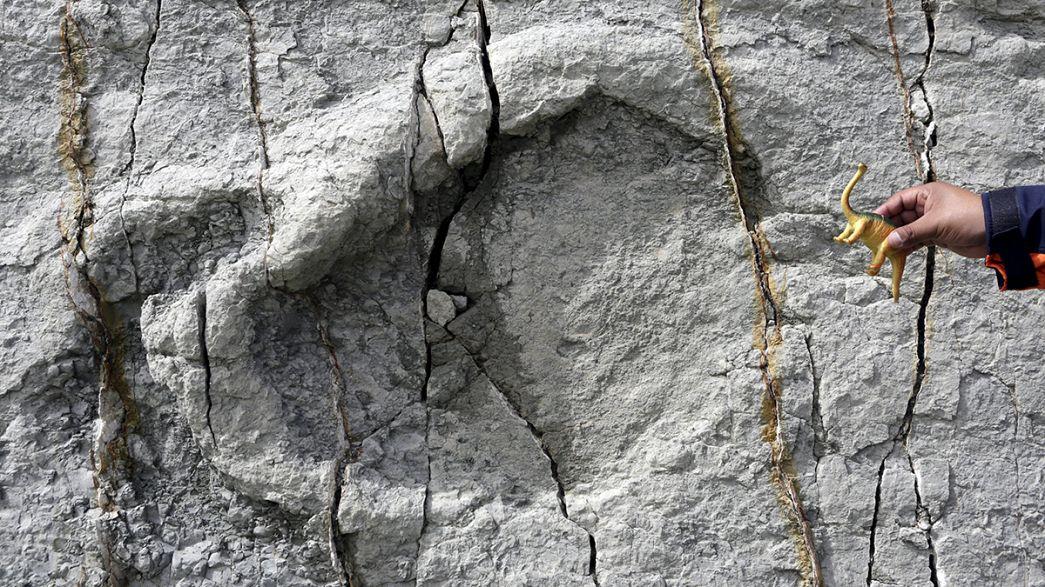 Erdrutsch legt 10.000 Dinosaurier-Spuren in Bolivien frei