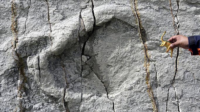 Ötezer dinoszaurusz lábnyomot találtak Bolíviában