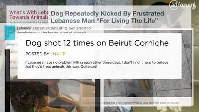 XPATPETS.com (Beirut for the Ethical Treatment of Animals)