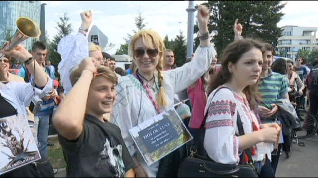 Romenos protestam contra desflorestação do país