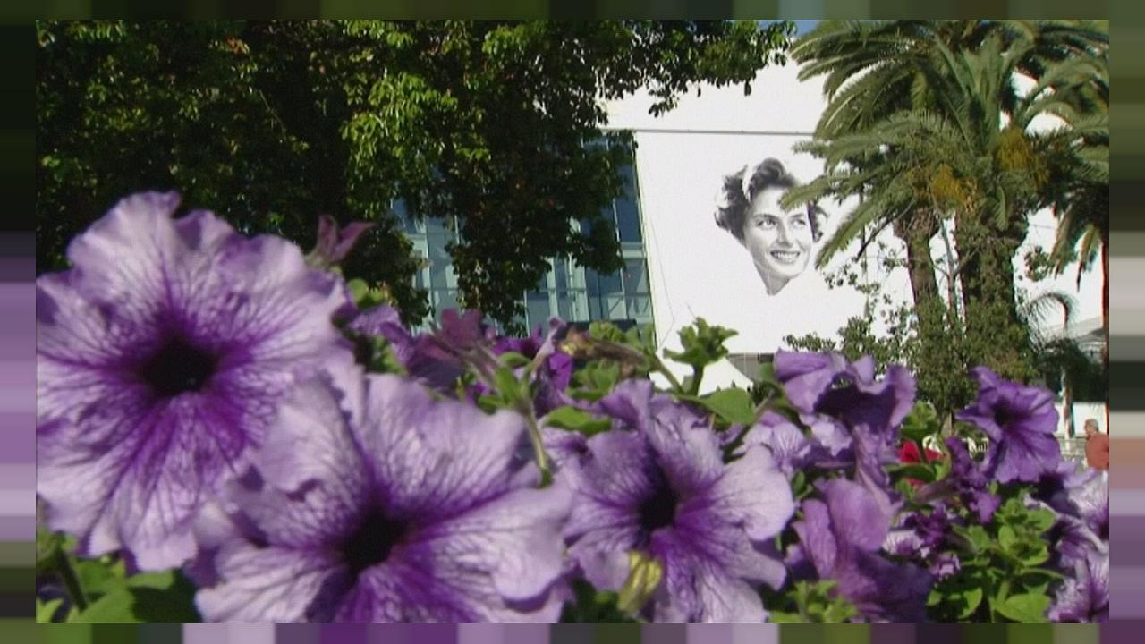 Ingrid Bergman adorns the 2015 Cannes Film Festival