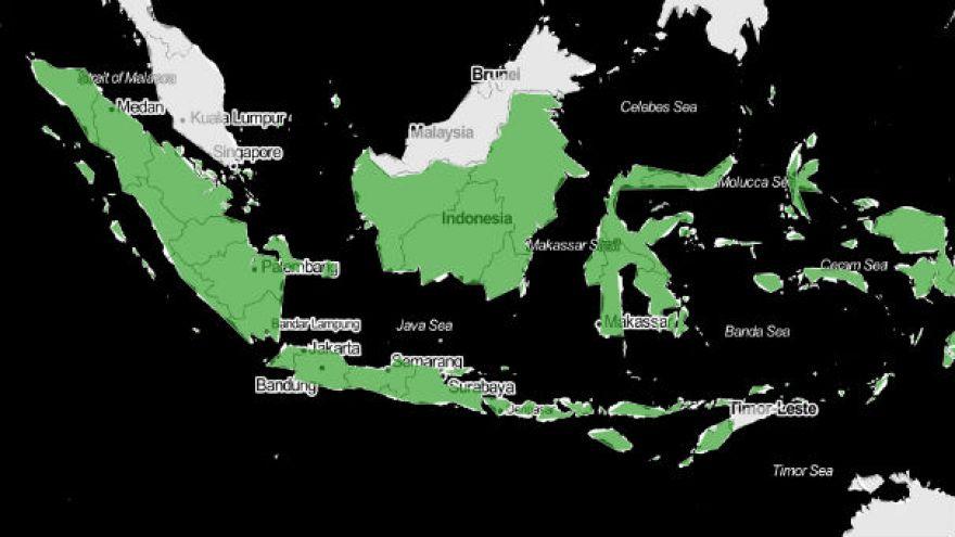 Endonezya'ya bekaret testine son verin çağrısı