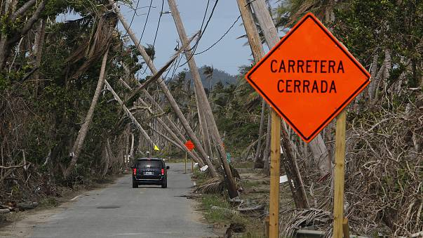 Image: A car drives under downed power lines in the aftermath of Hurricane