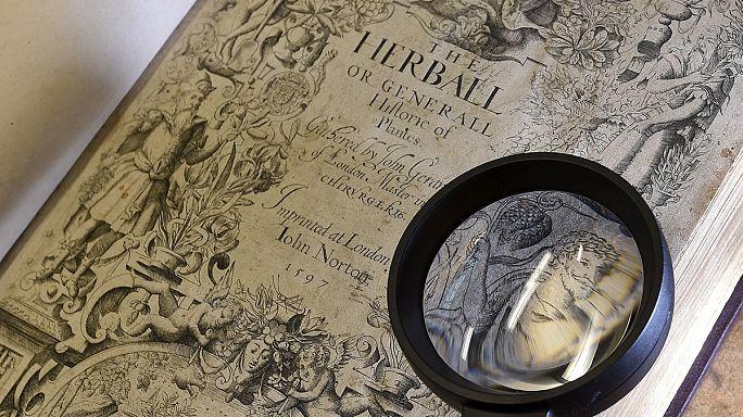 Így nézett ki William Shakespeare