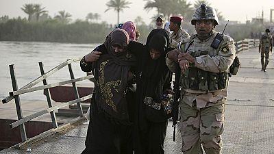 Milhares de iraquianos abandonam Ramadi para fugir à violência do Estado Islâmico