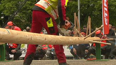 Germany wins the 14th European Championship of Forestry Skills – nocomment