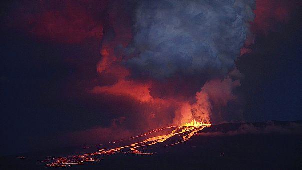الاكوادور: بركان وولف بجزر غالاباغوس يبدأ في الثوران
