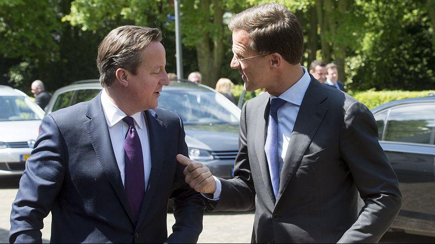 Cameron explica su plan a varios líderes de la UE