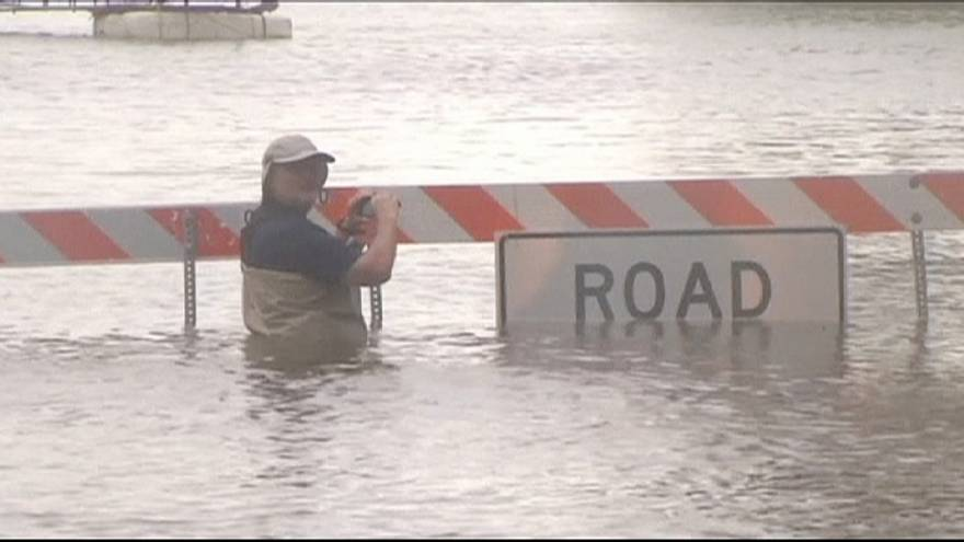 Texas cows rescued from floods