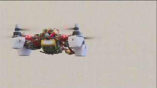 Drohnen, die wie Bienen fliegen