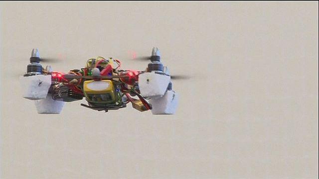 طائرة تستلهم طريقة النحل في الطيران ومعاينة المحيط