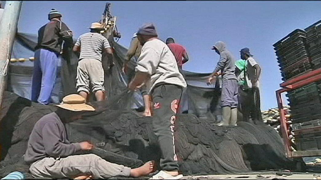 En el puerto tunecino de Zarzis pescan hombres