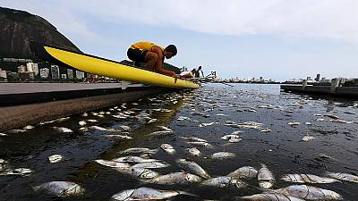 IOC concerned over Rio sailing venue pollution; adds new sports to 2018 Olympics