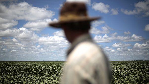 AB Latin Amerika ile ilişkileri güçlendirmek istiyor