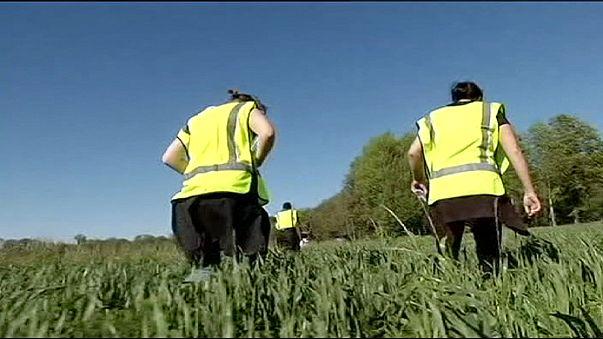 Швеция. Добровольцы помогают в поисках пропавшей девушки
